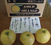 2012_0728_151520_2